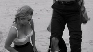 Barbara Wilkin Nude Leaks