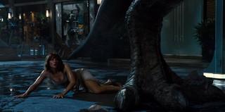 Bryce Dallas Howard Nude Leaks