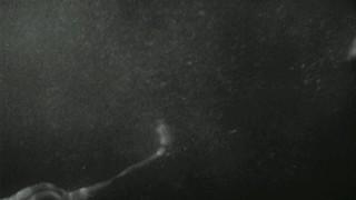 Dolores del Rio Nude Leaks