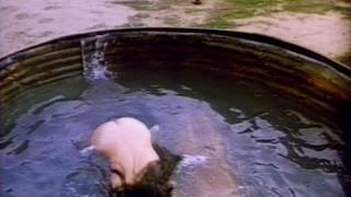 Joannelle Nadine Romero Nude Leaks
