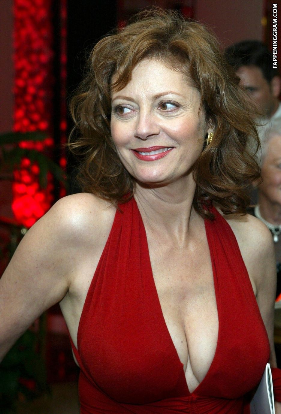 Susan Sarandon Nude The Fappening - FappeningGram